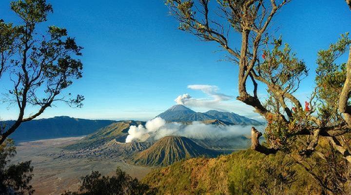 Jawa Timur Segera Bangkit 2021